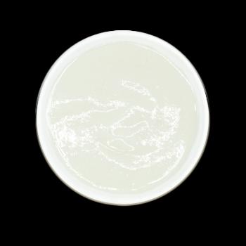 [실온] 양배추미음